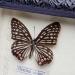 Картина бабочки QW-5