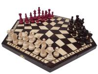 Шахи на трьох 162 Madon