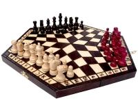 Шахматы на троих 163