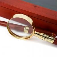 Ручка для письма подарочная и карманная лупа D73-269 BG