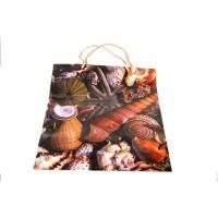 Пакет подарочный пластик 14*11,5*6,5   №10415-5