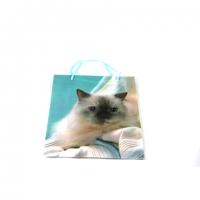 Пакет подарочный пластик 18*24*8   №10465-1