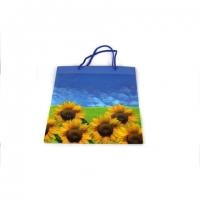 Пакет подарочный пластик 21*17*7.5   №10415-4