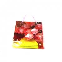 Пакет подарунковий пластик 25 * 32 * 9 №10465-5