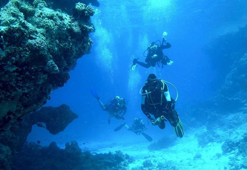 Подводники исследуют дно океана - фото интернет-магазина darunok.ua